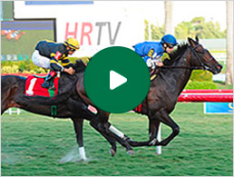 Bring your handicapping to life with video replays!