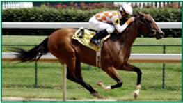 Equibase   Horse Racing   Horse Racing Entries   Horse Racing